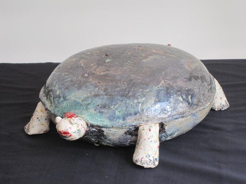 Schildpad 567