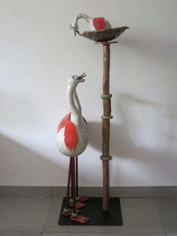 Vogels 568
