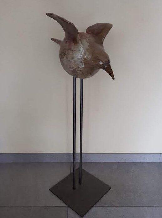 Vogel 627